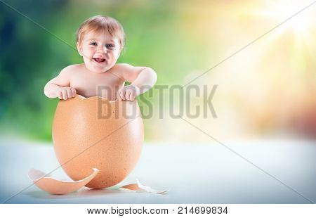 Funny And Beautiful Baby Appear In A Egg