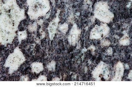 Diorite mineral stonemagmatic plutonic rock, intrusive igneous rock composed silicate minerals plagioclase feldspar, biotite, hornblende. Gray white stony background.