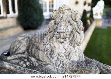 Portrait of a noble and regal male lion stone statue in a stately home garden in England, United Kingdom