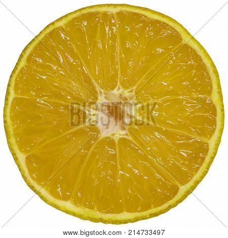 Isolated on white orance slice abstract background object. Yellow orange slice isolated on white background. Flat mandarin orange slice. Orange fruit round piece.