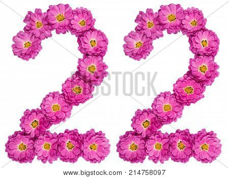 Arabic Numeral 22, Twenty Two, From Flowers Of Chrysanthemum, Isolated On White Background