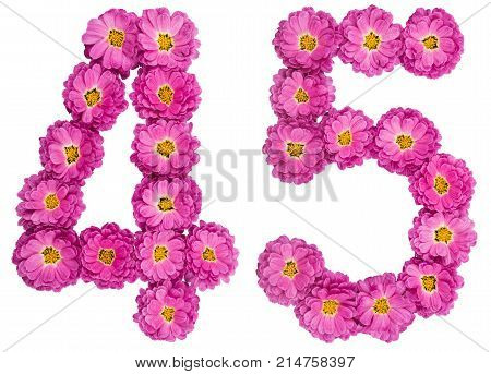 Arabic Numeral 45, Forty Five, From Flowers Of Chrysanthemum, Isolated On White Background