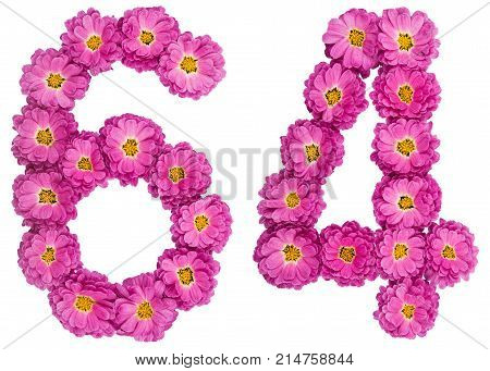Arabic Numeral 64, Sixty Four, From Flowers Of Chrysanthemum, Isolated On White Background