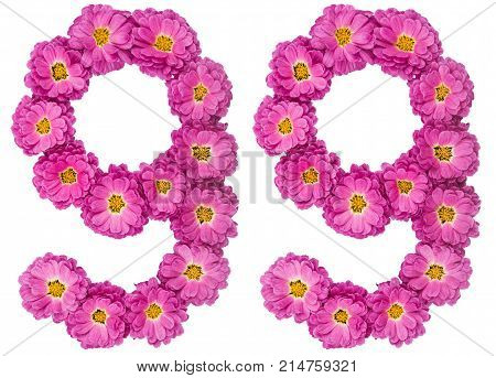 Arabic Numeral 99, Ninety Nine, From Flowers Of Chrysanthemum, Isolated On White Background
