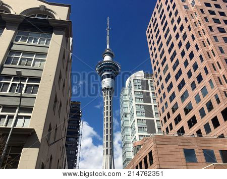 Auckland Sky Tower Skyline.