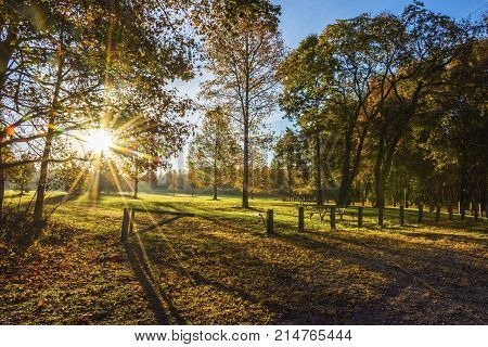Bright sunshine and an early morning view of Thompson Grove Park in Manalapan New Jersey.