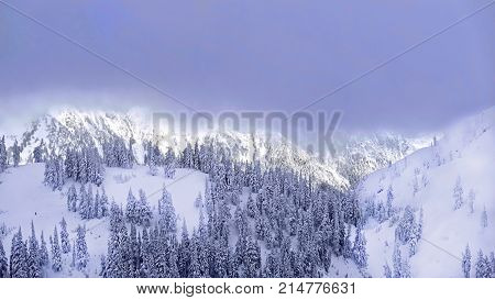 Ski resort after heavy snowfall. Trees covered with snow. Portland. Oregon. United States.