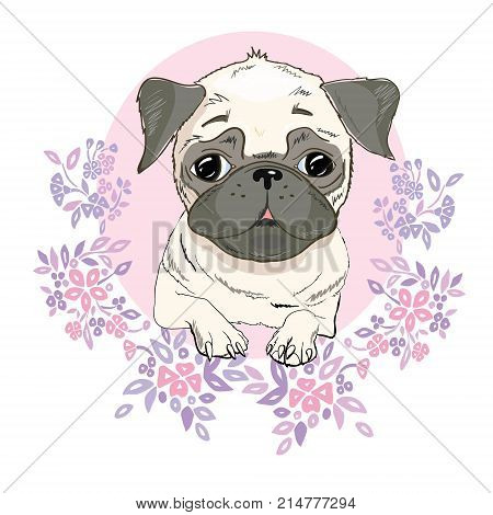 Pug dog face - vector illustration isolated on white background, concept, doggy, domestic, ears, icon, little, looking, outline, paws, pedigree, puggle, purebred sad sweet tail emblem eye friendly illustrated mascot art