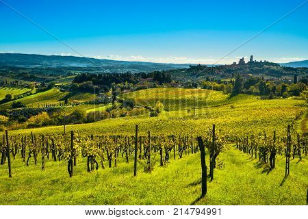 San Gimignano medieval town towers skyline and vineyards countryside landscape panorama on sunrise. Tuscany Italy Europe.