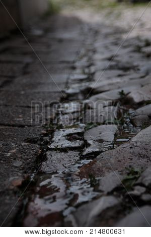 Cobble stone street with a bit of water