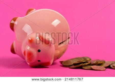 Ceramic Toy Pig On Back With Money Fallen Out