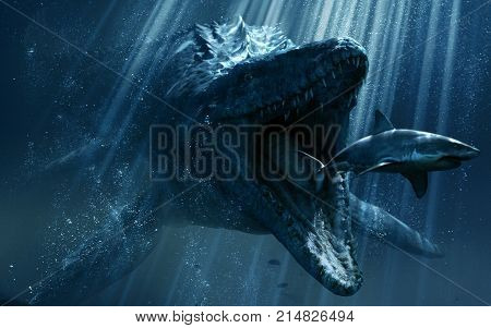 GReat blue shark in water eating small shark 2017