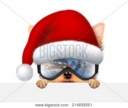 Funny Dog Santa Claus wearing ski goggles hiding behind banner. Winter glass mask with reflection of mountains. New Year and Christmas concept. Realistic 3D illustration.
