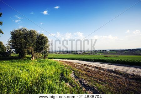 Landscape in nature of sky with cloudy and roadway through a evergreen forest. Road passing mountain. Beautiful of nature summer mountain landscape. Cross process.