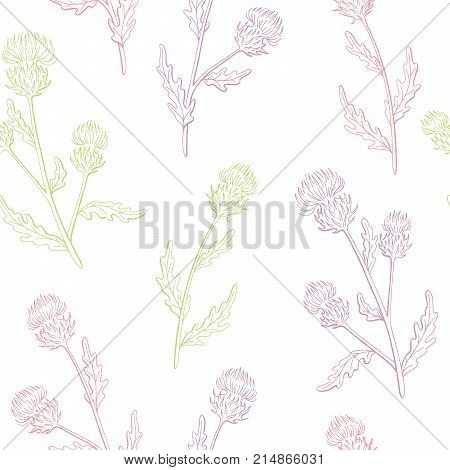 Thistle flower graphic color seamless pattern sketch illustration vector