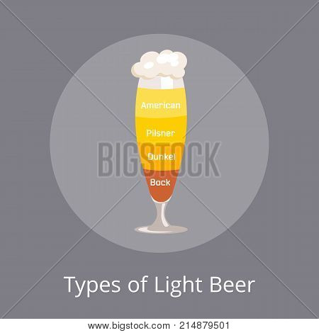 Types of light beer american and dunkel, pilsner and bock which are beers types with foam of different color isolated on vector illustration on grey