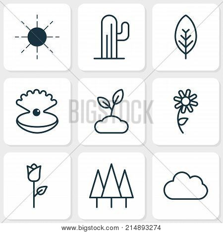 Harmony Icons Set With Plant, Sun, Love Flower And Other Plant Elements. Isolated Vector Illustration Harmony Icons.