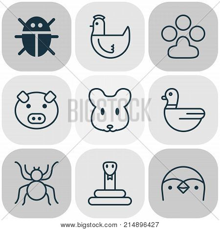 Zoo Icons Set With Serpent, Claw Print, Beetle And Other Serpent Elements. Isolated Vector Illustration Zoo Icons.
