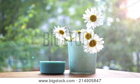 Chamomile morning candle dawn. The concept of a summer morning. A Sunny mood. The morning has come.