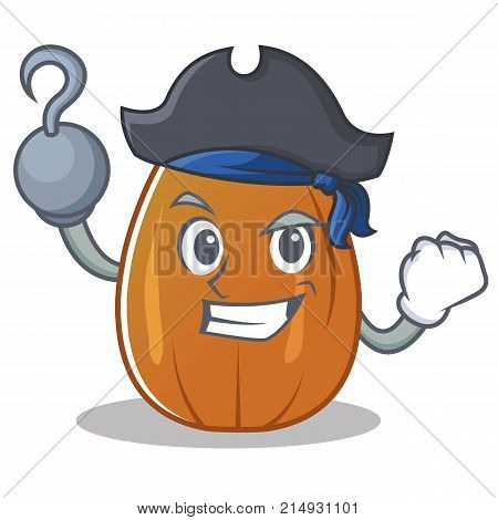 Pirate almond nut character cartoon vector illustration