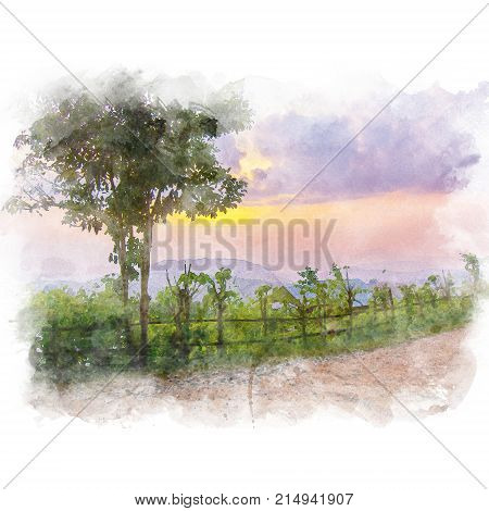 Palisade and tree beside dirt road in a rural area with mountain and beautiful sky background. Watercolor painting (retouch). poster