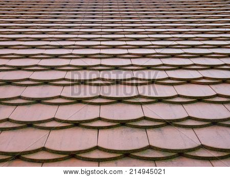 Traditional red roof flat plain tile pattern texture in perspective.