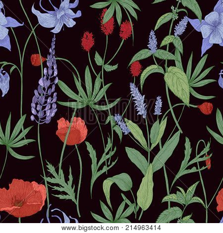 Elegant botanical seamless pattern with wild flowers and herbs on black background - field poppies, lupine, great burnet, granny s bonnet, peppermint. Floral vector illustration in antique style