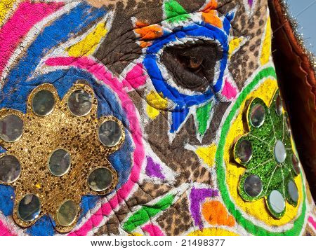 Painted And Decorated Elephant's Face