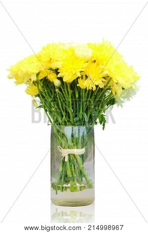 Bright of yellow chrysanthemum flowers in vase isolated on white background clipping path.
