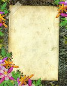 Flowered frame for greeting congratulations or felicitation poster