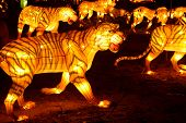 Many tiger shape lanterns displayed in a festival. poster