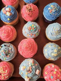 Pink and Blue Cupcakes. Homemade colorfully decorated pastel pink and blue cupcakes