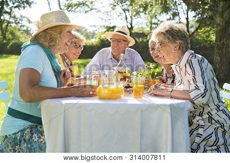 Elderly Friends Having Picnic In Park On A Sunny Day.