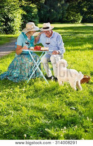Happy Elderly Couple Enjoying Their Talk.