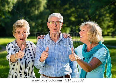 Active Senior Friends.