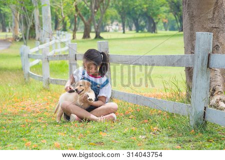 Young Asian Girl Playing With A Little Golden Retriever Dog In Park