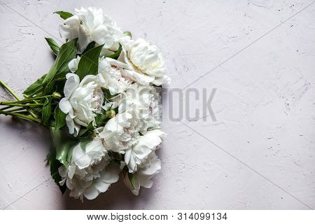 Beautiful Peony Flowers With Copy Space For Your Text Top View And Flat Lay Style. A