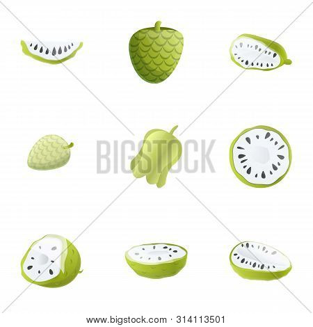 Citrus Soursop Icon Set. Cartoon Set Of 9 Citrus Soursop Vector Icons For Web Design Isolated On Whi
