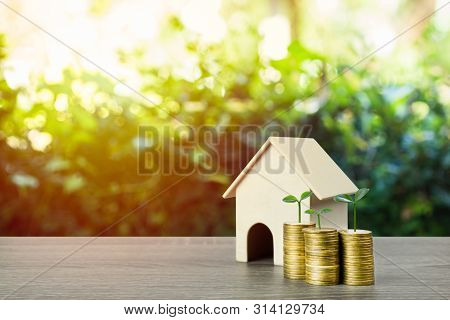 Property Investment, Savings Money For Buy New Home Concepts. A Small House Model With Plant Growth