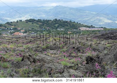 View On Small Village Located Just Few Meters From New Eruption Lava Fields On Slopes Of Mount Etna