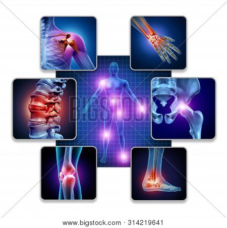 Human Body Joint Pain Concept As Skeleton And Muscle Anatomy Of The Body With A Group Of Sore Joints