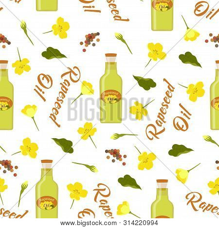 Seamless Rapeseeds And Flowers Pattern, Canola Buds, Rapeseed Inflorescences, Canola Oil, White Back