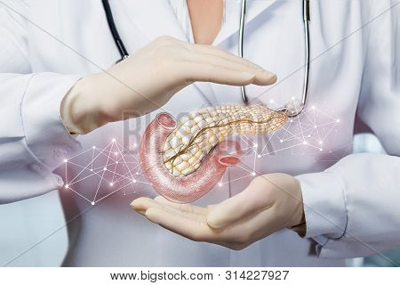 The Concept Of Protection Of The Pancreas Of The Patient.
