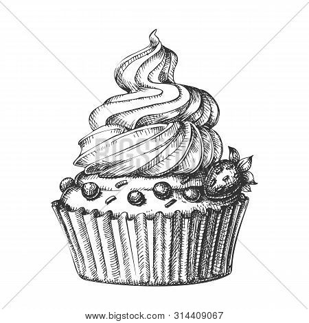 Creamy Berry Cake Sweet Dessert Vintage Vector. Bakery Confectionery Delicious Cake With Strawberry,