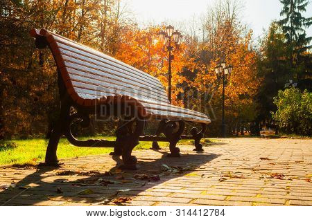 Fall October landscape. Bench at the fall park under colorful deciduous fall trees lit by bright sunlight - sunny fall view. Colorful fall landscape park scene