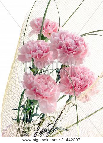 posy of pink carnations