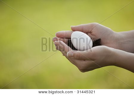 Gently Holding An Egg