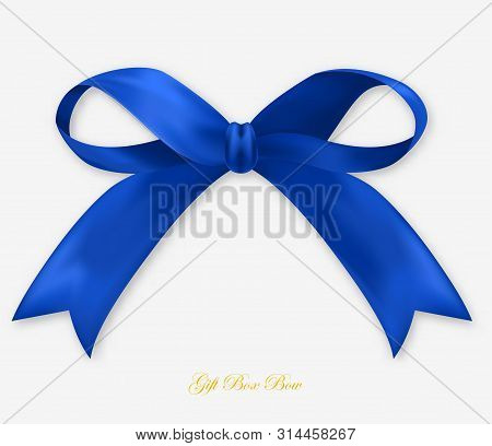 Party Gift Blue Silk Bow, Isolated Object
