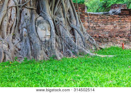 Famous Buddha Head With Banyan Tree Root At Wat Mahathat Temple In Ayutthaya Historical Park, Ancien