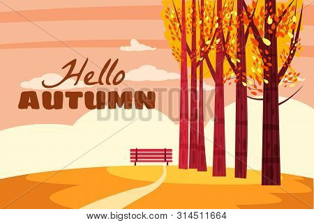 Autumn Landscape, Hello Autumn Fall Trees With Yellow Leaves, Lonely Bench For Contemplation Of Autu